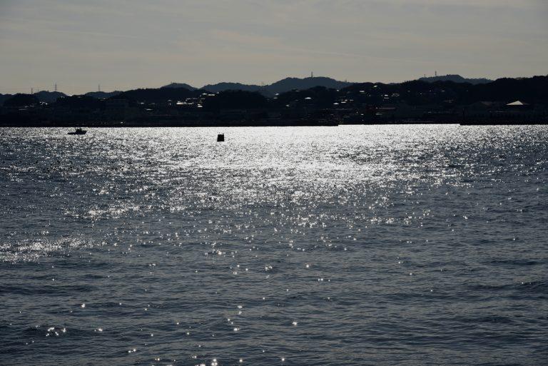 星野直人写真展「SARUSHIMA 〜都会の無人島〜」#01